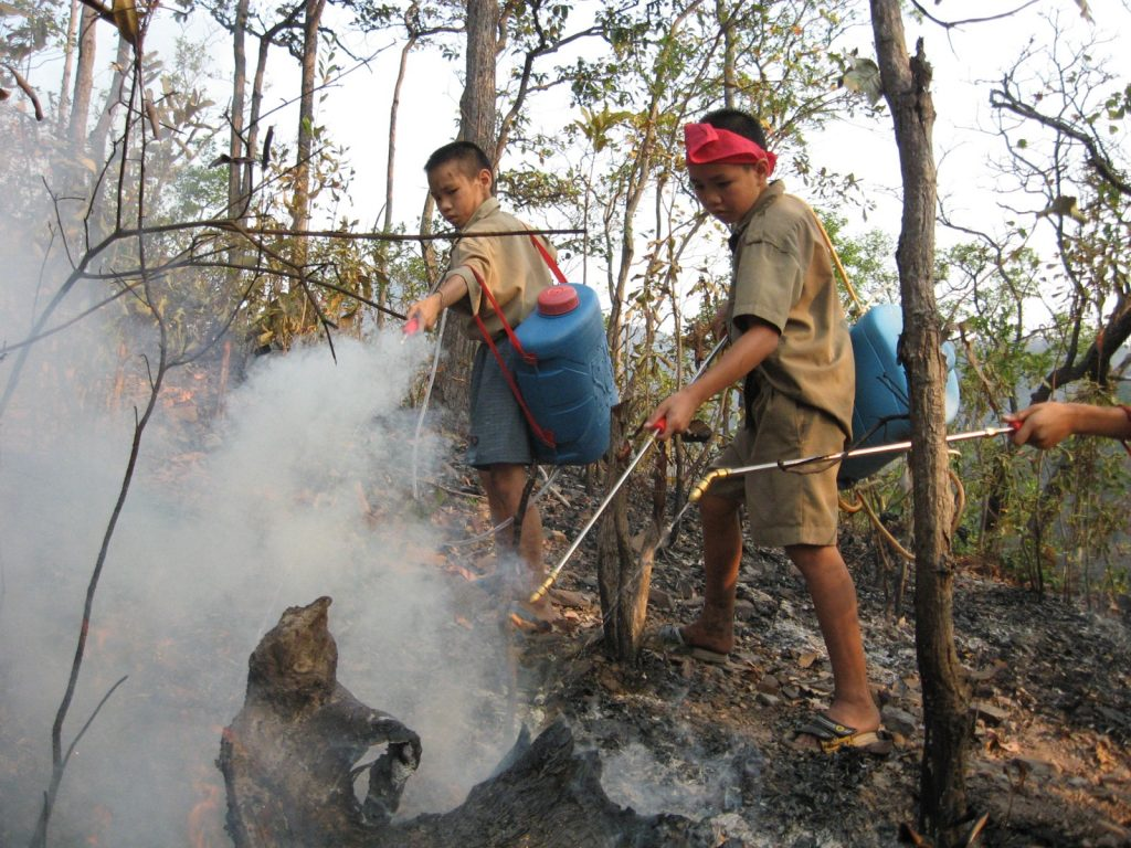 Students putting out a forest fire