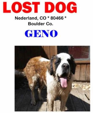 Redacted flyer for a firefighter's missing dog Geno after the Cold Springs Fire